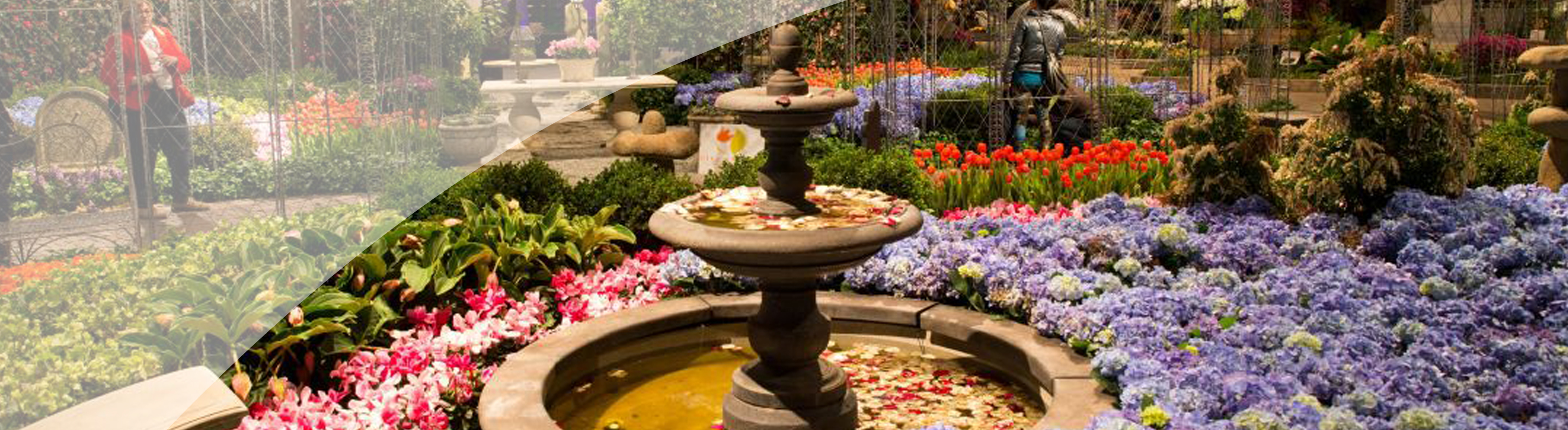 Chicago Flower & Garden Show - MidAmerica National Bank
